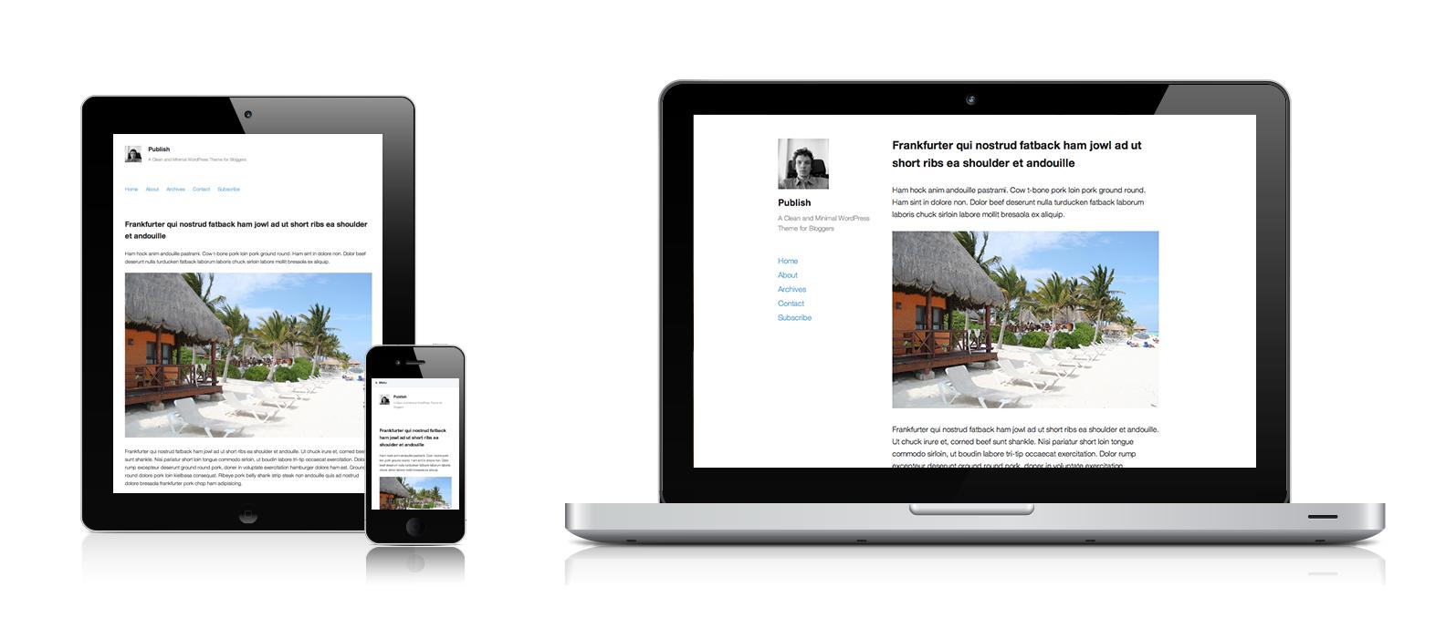 WordPress Theme Publish