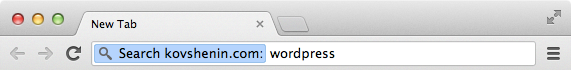 WordPress Search with Chrome